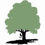 Douglas Lewis Tree Company